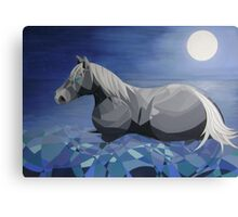 Moon Horse Canvas Print