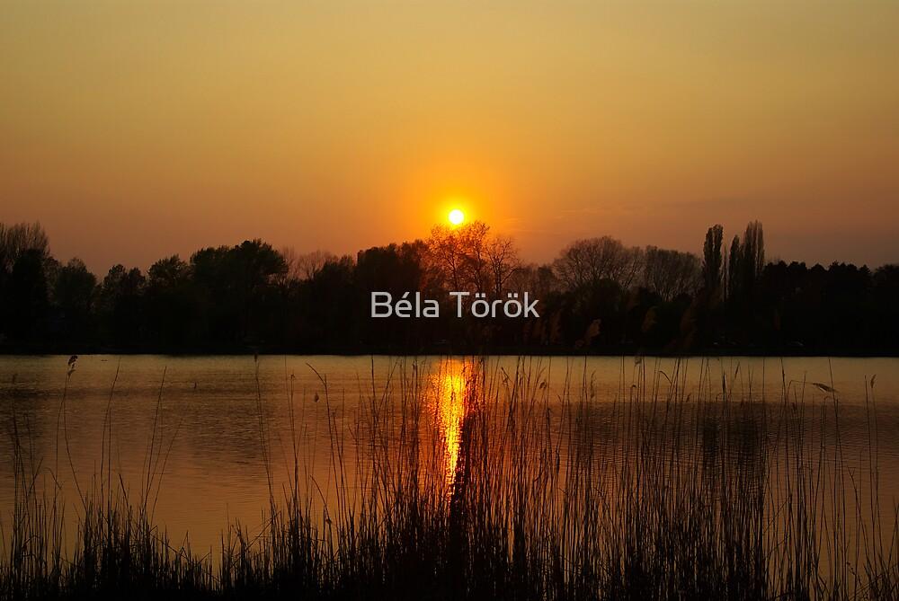 Salt Lake Sunset by Béla Török