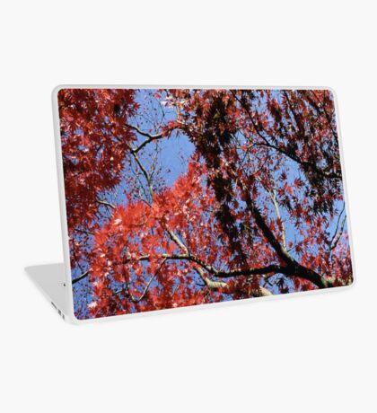 Overhead Red Laptop Skin