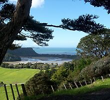 Wenderholm Regional Park, Auckland, New Zealand.......! by Roy  Massicks