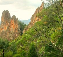 Warrumbungle Fissure by Michael Matthews