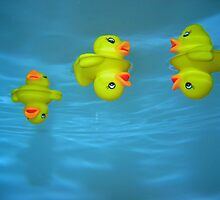 Ducky by Christopher Bookholt