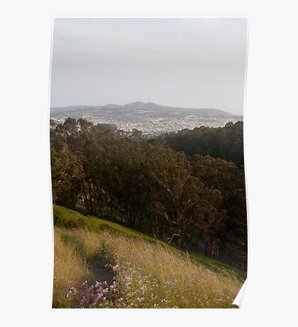 Glen Park Canyon Poster