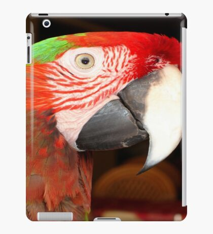 A Beautiful Bird Harlequin Macaw Portrait iPad Case/Skin