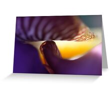 Smiley Iris: A Series Greeting Card