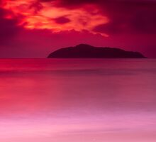 Sunrise Red by Clare Colins