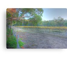 Local winery Metal Print