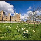 Castle Bolton by Shaun Whiteman