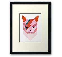 David Bowie Cat Framed Print