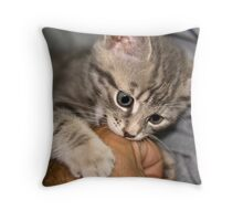 Is this my food Throw Pillow