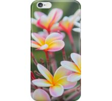 Hot Pink Plumeria tree iPhone Case/Skin