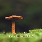 A Growing Toadstool Gathers No Moss by Kate Hibbert