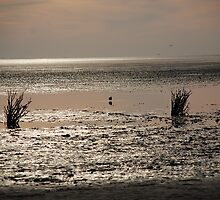 sunset at lowtide by Heike Nagel