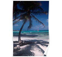 Scenic Caribbean Beach Poster