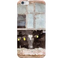 Cows in stable iPhone Case/Skin