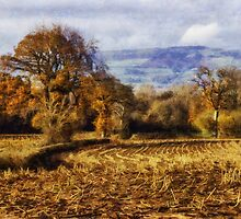 Autumn Fields by Ian Mitchell