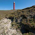 The Lighthouse by Brendan Schoon