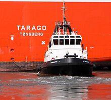 Tarago by Andrew Linturn