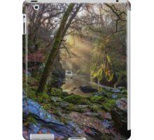 Magical Fairy Glen iPad Case/Skin