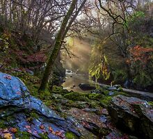 Magical Fairy Glen by Ian Mitchell