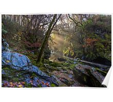 Magical Fairy Glen Poster