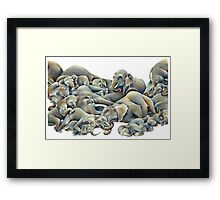 Elephant Ivory Slumber  Framed Print