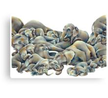 Elephant Ivory Slumber  Canvas Print