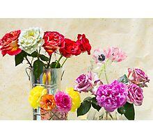 Symphony Of Rainbow Flowers Photographic Print