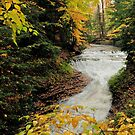 fall at bridal veil falls in cvnp ohio by 1busymom