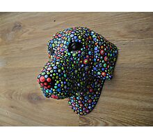Dotted Dog Photographic Print