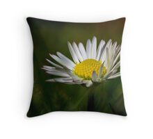 Just a Daisy Throw Pillow