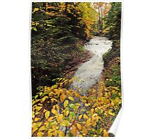 cuyahoga valley national park's bridal veil falls on a fall day Poster