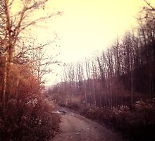 All Your Pathways Peace by NicholeRenee