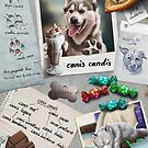 Canis Candis by EosFoxx