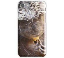 Quills and claws iPhone Case/Skin