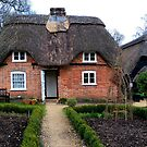 Little New Forest Cottage by hootonles