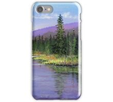 Silver Creek iPhone Case/Skin