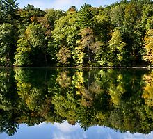 Autumn Reflection Landscape by Christina Rollo