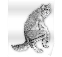 Good werewolf Poster