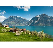 spring scenery at lake lucern Photographic Print