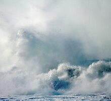 One Heck of a Wave! by Polly Peacock