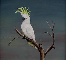 Sulphur Crested Cockatoo by Jennie Liebich