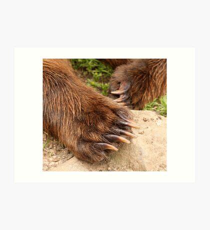 Cubby Bear Claws Art Print