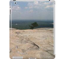 Mountain top iPad Case/Skin