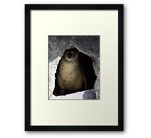 WHAT DO YOU WANT? Framed Print