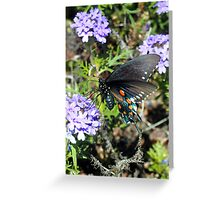 Butterfly on the Brine Greeting Card