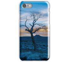 I lost my kite iPhone Case/Skin