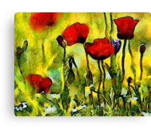 Poppies in the Morning Canvas Print