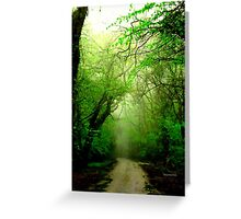 Misty Morning in the Forest Greeting Card