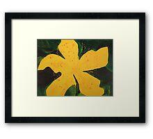 My Yellow Mystery Flower Framed Print